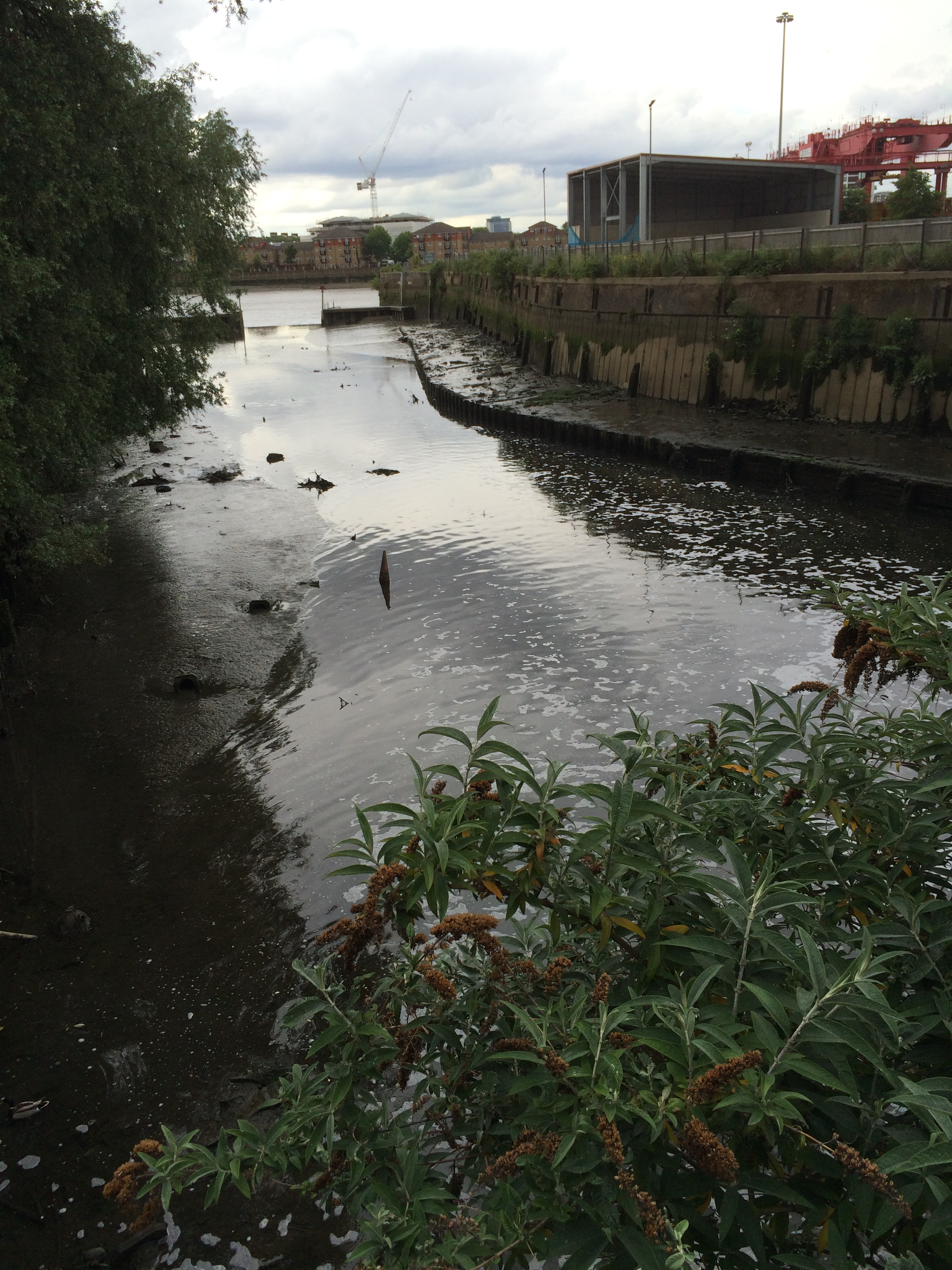 Wandle Modern wandering along the wandle s wonderful industrial history past in